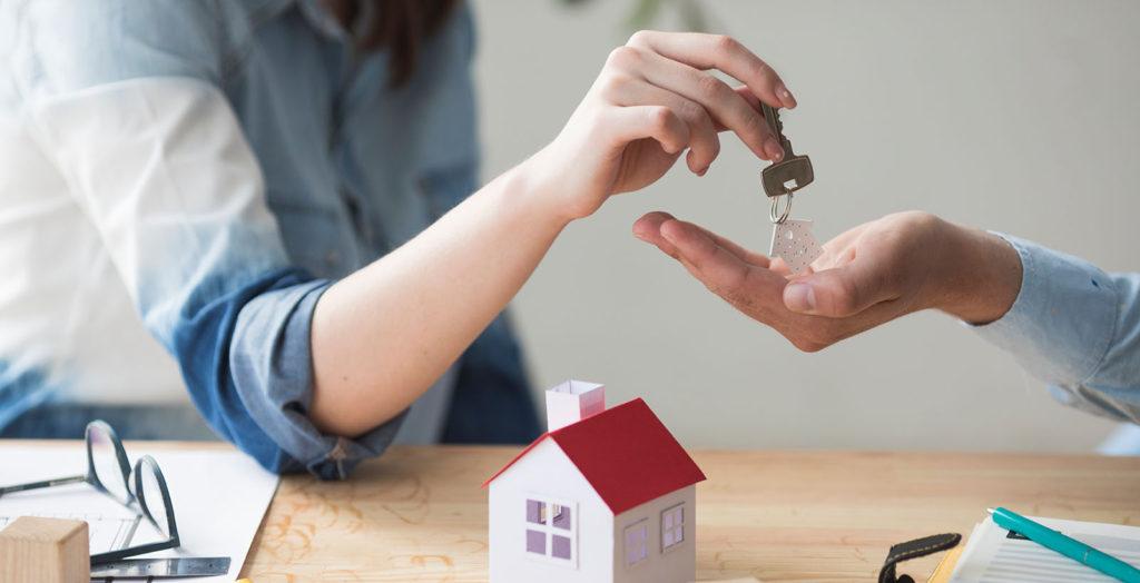 Совместное имущество при банкротстве