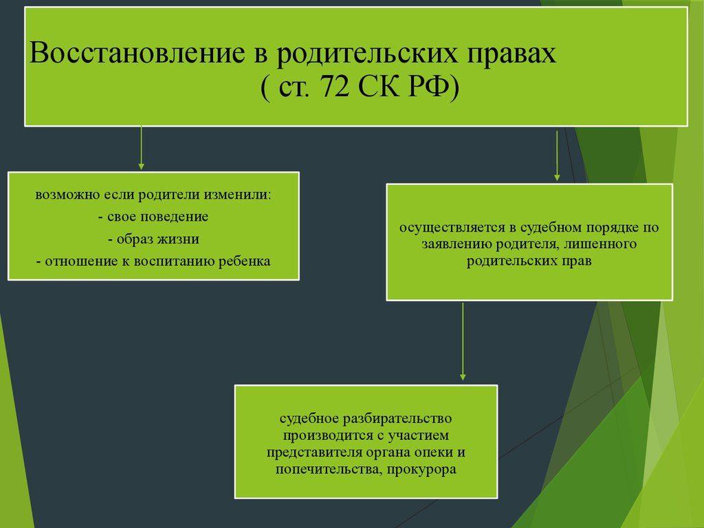 Родительские права: инфографика по СК РФ